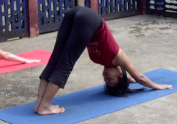 Parvata Asana (Mountain)
